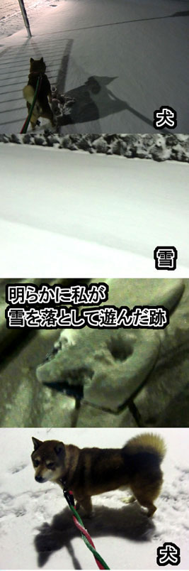 inutoyuki.jpg